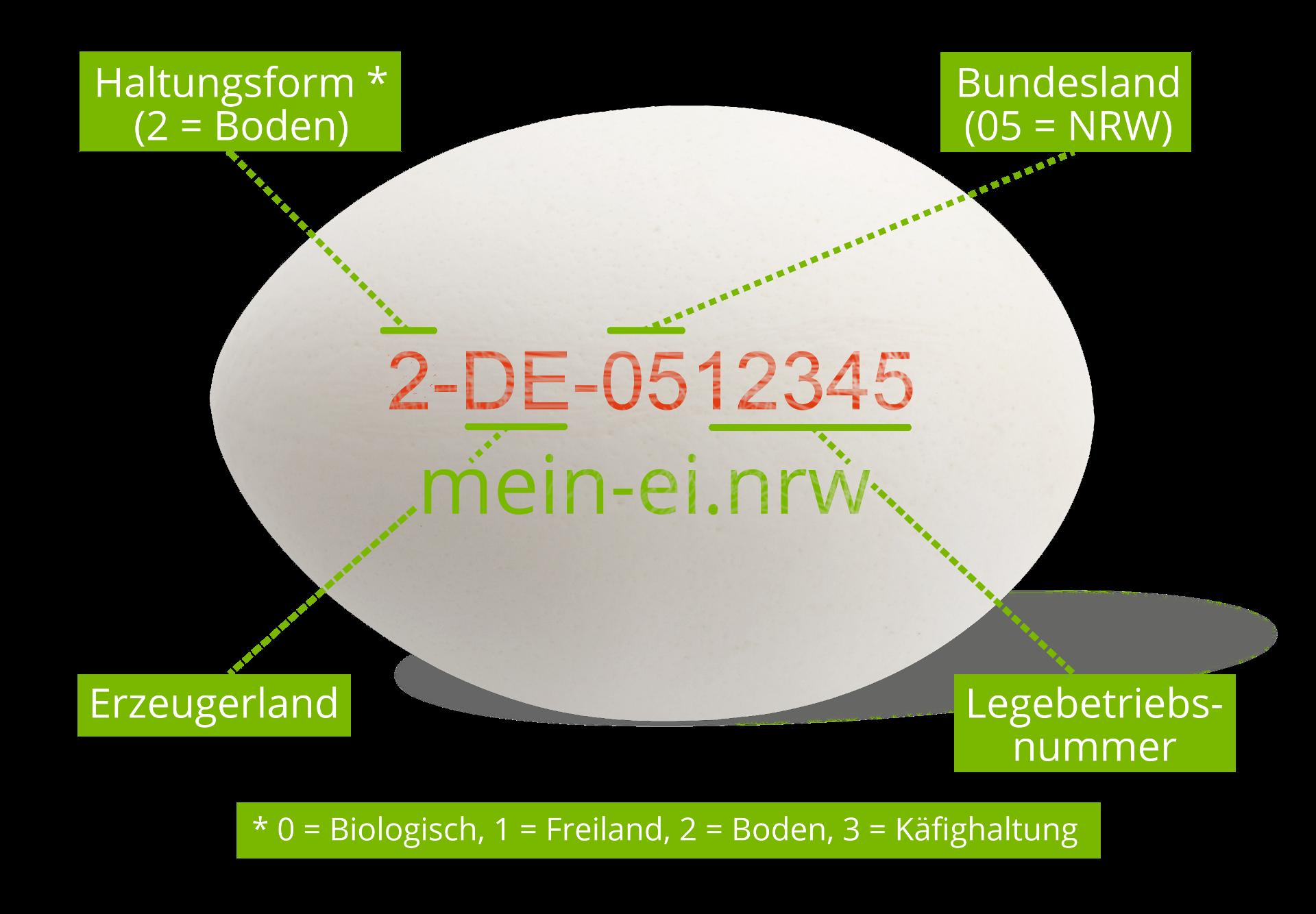 Abbildung: Beispiel Ei-Erzeugercode