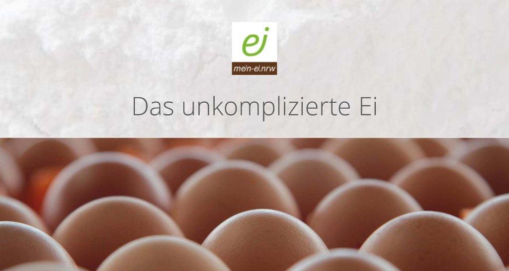 Abbildung Folie Das unkomplizierte Ei
