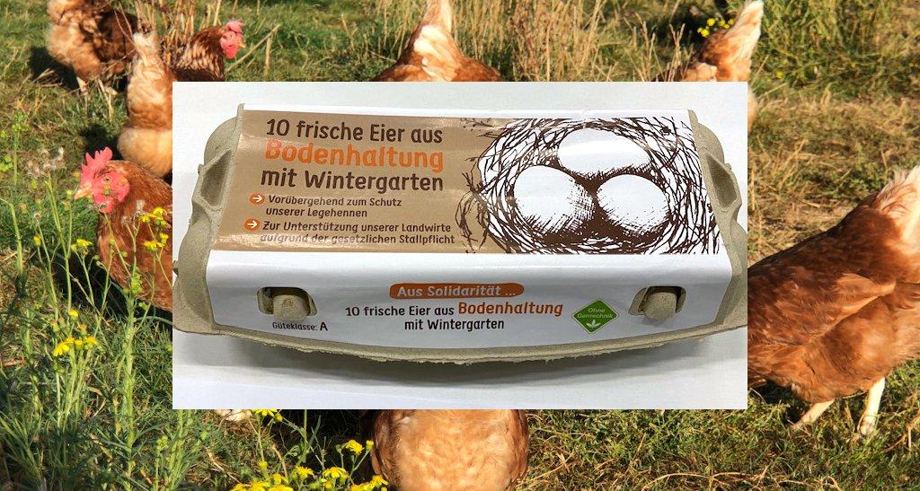 Foto: Eier aus Bodenhaltung mit Wintergarten